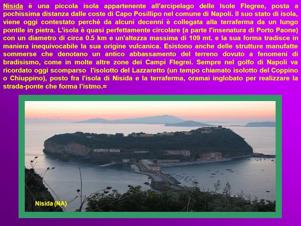 Nisida è una piccola isola appartenente all arcipelago delle Isole Flegree, posta a pochissima distanza dalle coste di Capo Posillipo nel comune di Napoli. Il suo stato di isola, viene oggi contestato perché da alcuni decenni è collegata alla terraferma da un lungo pontile in pietra. L isola è quasi perfettamente circolare (a parte l insenatura di Porto Paone) con un diametro di circa 0.5 km e un altezza massima di 109 mt. e la sua forma tradisce in maniera inequivocabile la sua origine vulcanica. Esistono anche delle strutture manufatte sommerse che denotano un antico abbassamento del terreno dovuto a fenomeni di bradisismo, come in molte altre zone dei Campi Flegrei. Sempre nel golfo di Napoli va ricordato oggi scomparso l isolotto del Lazzaretto (un tempo chiamato isolotto del Coppino o Chiuppino), posto fra l isola di Nisida e la terraferma, oramai inglobato per realizzare la strada-ponte che forma l'istmo.=