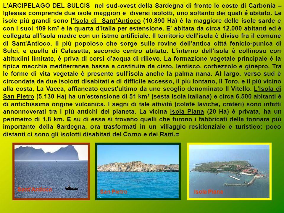 L'ARCIPELAGO DEL SULCIS nel sud-ovest della Sardegna di fronte le coste di Carbonia –Iglesias comprende due isole maggiori e diversi isolotti, uno soltanto dei quali é abitato. Le isole più grandi sono l'Isola di Sant'Antioco (10.890 Ha) è la maggiore delle isole sarde e con i suoi 109 km² è la quarta d Italia per estensione. E abitata da circa 12.000 abitanti ed è collegata all isola madre con un istmo artificiale. Il territorio dell isola è diviso fra il comune di Sant Antioco, il più popoloso che sorge sulle rovine dell antica città fenicio-punica di Sulci, e quello di Calasetta, secondo centro abitato. L interno dell isola è collinoso con altitudini limitate, è priva di corsi d acqua di rilievo. La formazione vegetale principale è la tipica macchia mediterranea bassa a costituita da cisto, lentisco, corbezzolo e ginepro. Tra le forme di vita vegetale è presente sull isola anche la palma nana. Al largo, verso sud è circondata da due isolotti disabitati e di difficile accesso, il più lontano, Il Toro, e il più vicino alla costa, La Vacca, affiancato quest ultimo da uno scoglio denominato Il Vitello. L'Isola di San Pietro (5.130 Ha) ha un estensione di 51 km² (sesta isola italiana) e circa 6.500 abitanti è di antichissima origine vulcanica. I segni di tale attività (colate laviche, crateri) sono infatti annonnoverati tra i più antichi del pianeta. La vicina Isola Piana (20 Ha) è privata, ha un perimetro di 1,8 km. E su di essa si trovano quelli che furono i fabbricati della tonnara più importante della Sardegna, ora trasformati in un villaggio residenziale e turistico; poco distanti ci sono gli isolotti disabitati del Corno e dei Ratti.=