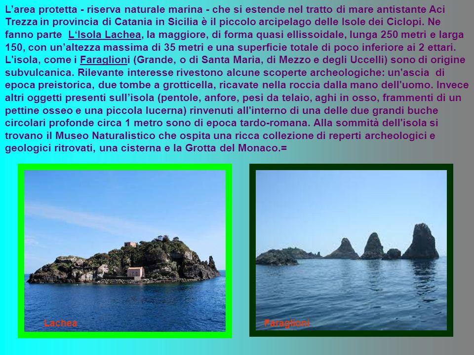 L'area protetta - riserva naturale marina - che si estende nel tratto di mare antistante Aci Trezza in provincia di Catania in Sicilia è il piccolo arcipelago delle Isole dei Ciclopi. Ne fanno parte L'Isola Lachea, la maggiore, di forma quasi ellissoidale, lunga 250 metri e larga 150, con un'altezza massima di 35 metri e una superficie totale di poco inferiore ai 2 ettari. L isola, come i Faraglioni (Grande, o di Santa Maria, di Mezzo e degli Uccelli) sono di origine subvulcanica. Rilevante interesse rivestono alcune scoperte archeologiche: un ascia di epoca preistorica, due tombe a grotticella, ricavate nella roccia dalla mano dell uomo. Invece altri oggetti presenti sull'isola (pentole, anfore, pesi da telaio, aghi in osso, frammenti di un pettine osseo e una piccola lucerna) rinvenuti all interno di una delle due grandi buche circolari profonde circa 1 metro sono di epoca tardo-romana. Alla sommità dell isola si trovano il Museo Naturalistico che ospita una ricca collezione di reperti archeologici e geologici ritrovati, una cisterna e la Grotta del Monaco.=
