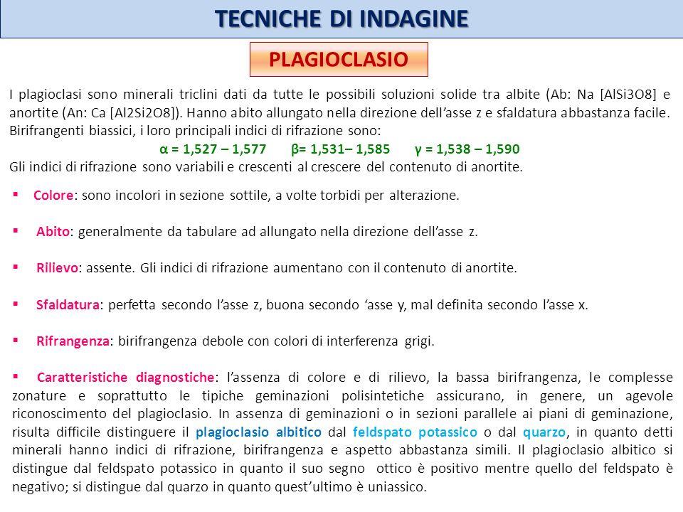 TECNICHE DI INDAGINE PLAGIOCLASIO