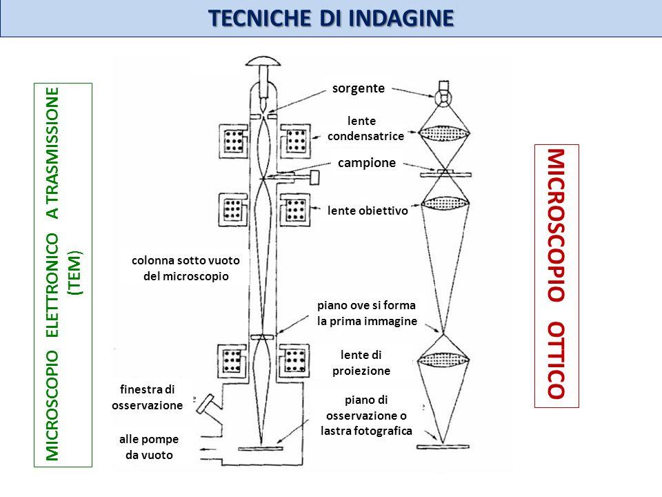 TECNICHE DI INDAGINE MICROSCOPIO OTTICO