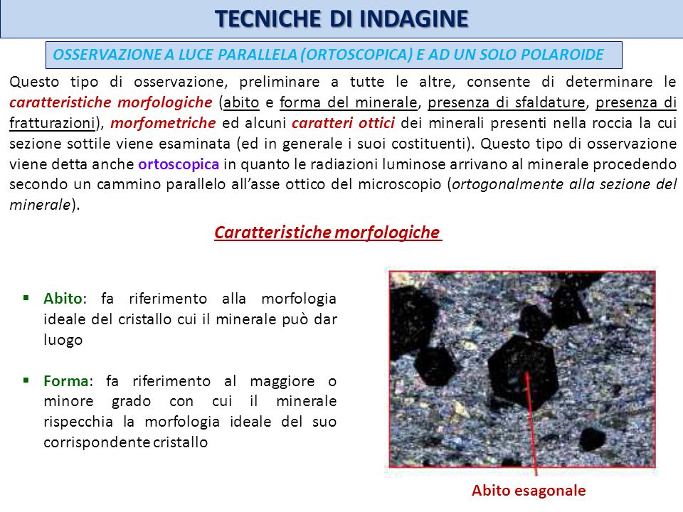 TECNICHE DI INDAGINE Caratteristiche morfologiche