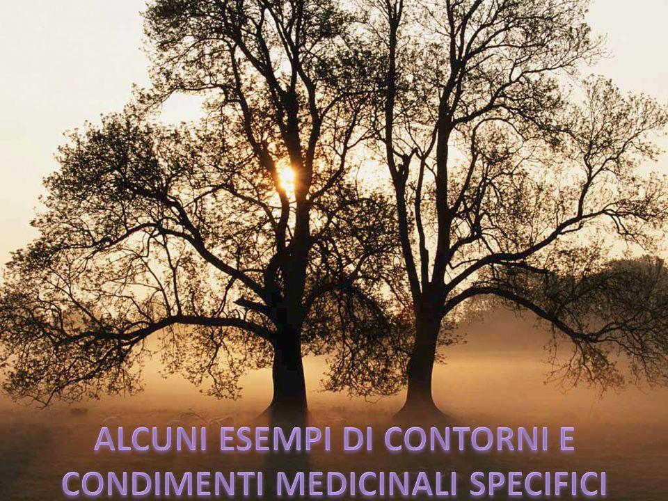 ALCUNI ESEMPI DI CONTORNI E CONDIMENTI MEDICINALI SPECIFICI