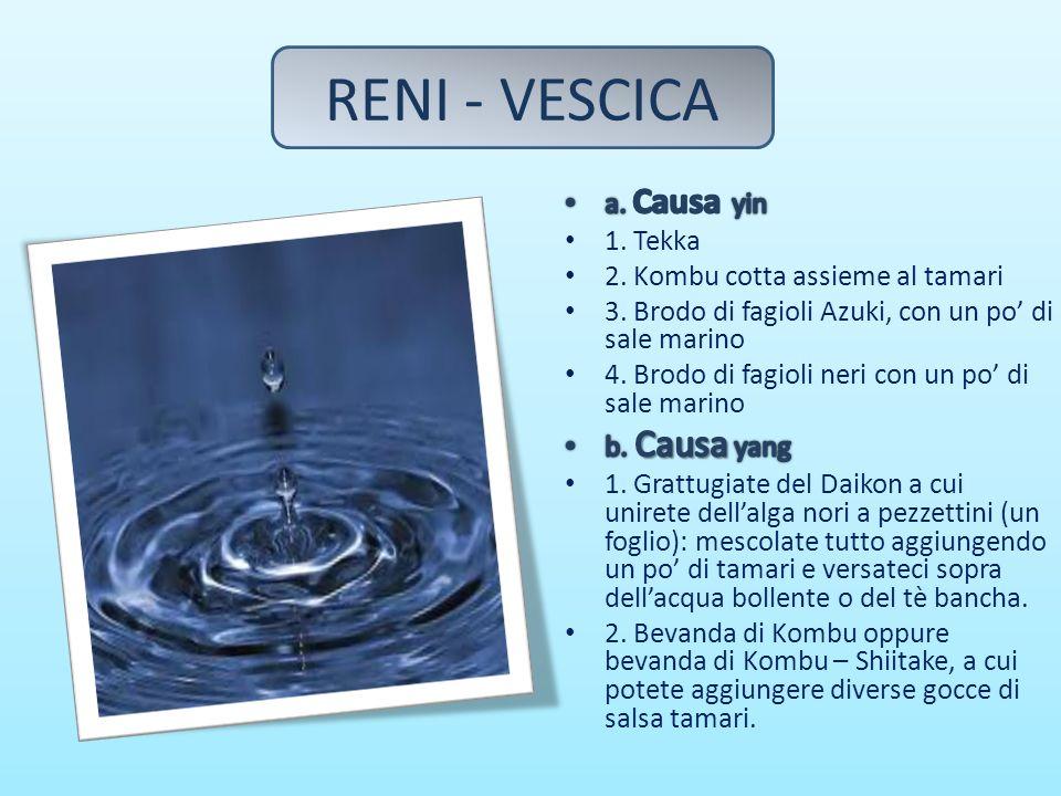 RENI - VESCICA a. Causa yin 1. Tekka 2. Kombu cotta assieme al tamari