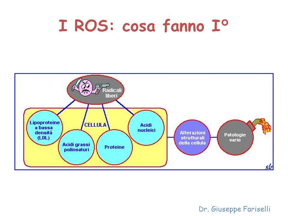 I ROS: cosa fanno I° Dr. Giuseppe Fariselli