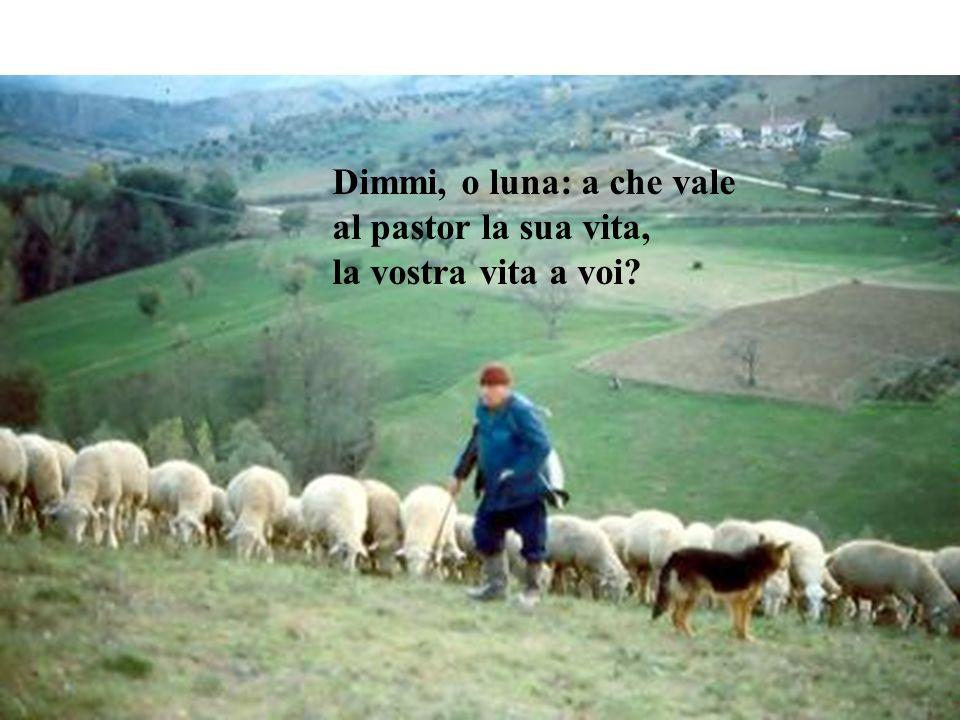 Dimmi, o luna: a che vale al pastor la sua vita, la vostra vita a voi