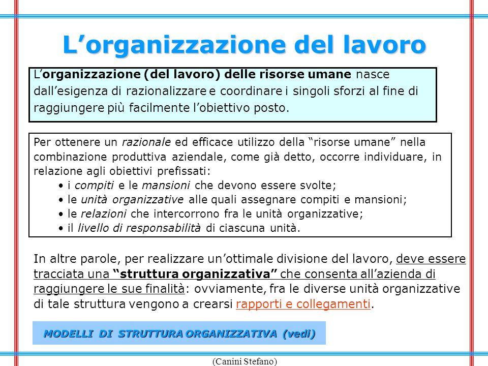 L'organizzazione del lavoro MODELLI DI STRUTTURA ORGANIZZATIVA (vedi)