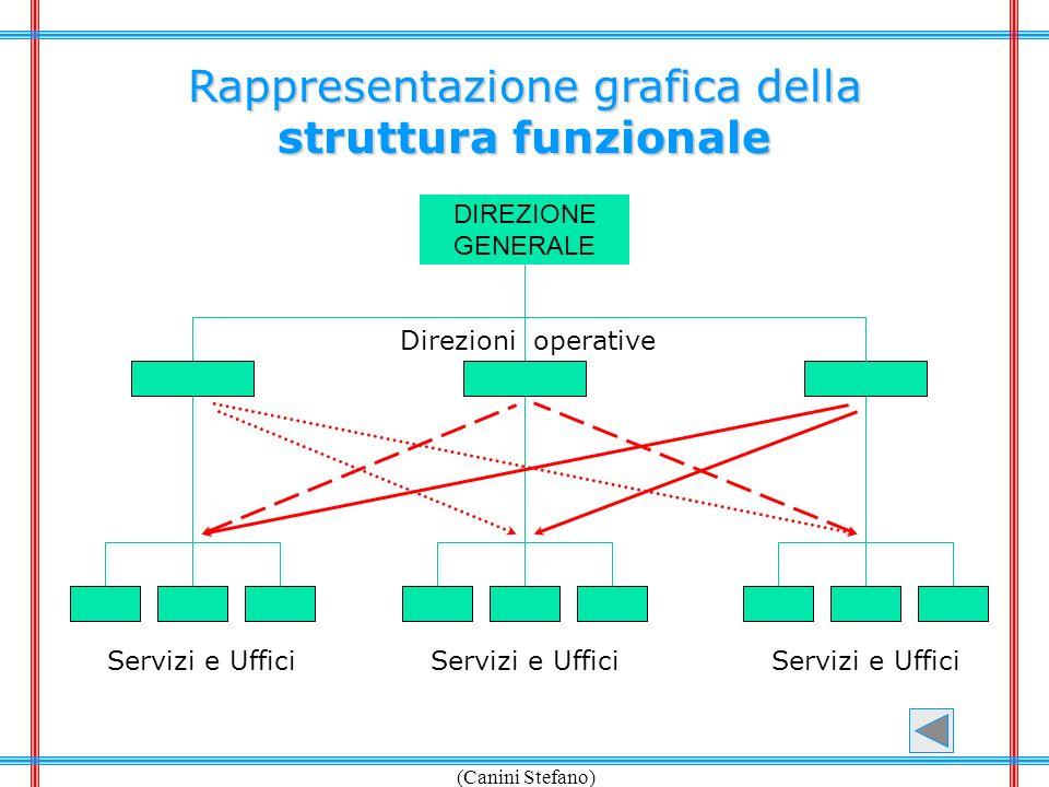 Rappresentazione grafica della struttura funzionale