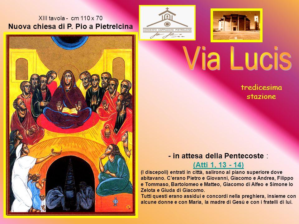 Via Lucis tredicesima stazione - in attesa della Pentecoste :