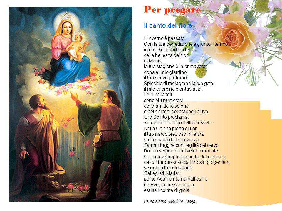 Per pregare Il canto del fiore