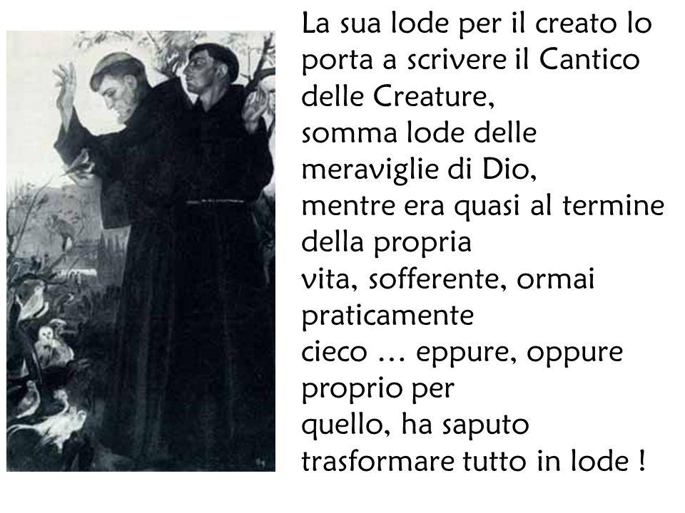 La sua lode per il creato lo porta a scrivere il Cantico delle Creature,