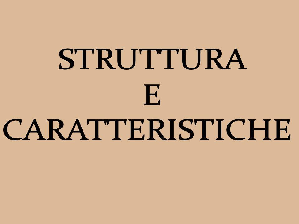 STRUTTURA E CARATTERISTICHE