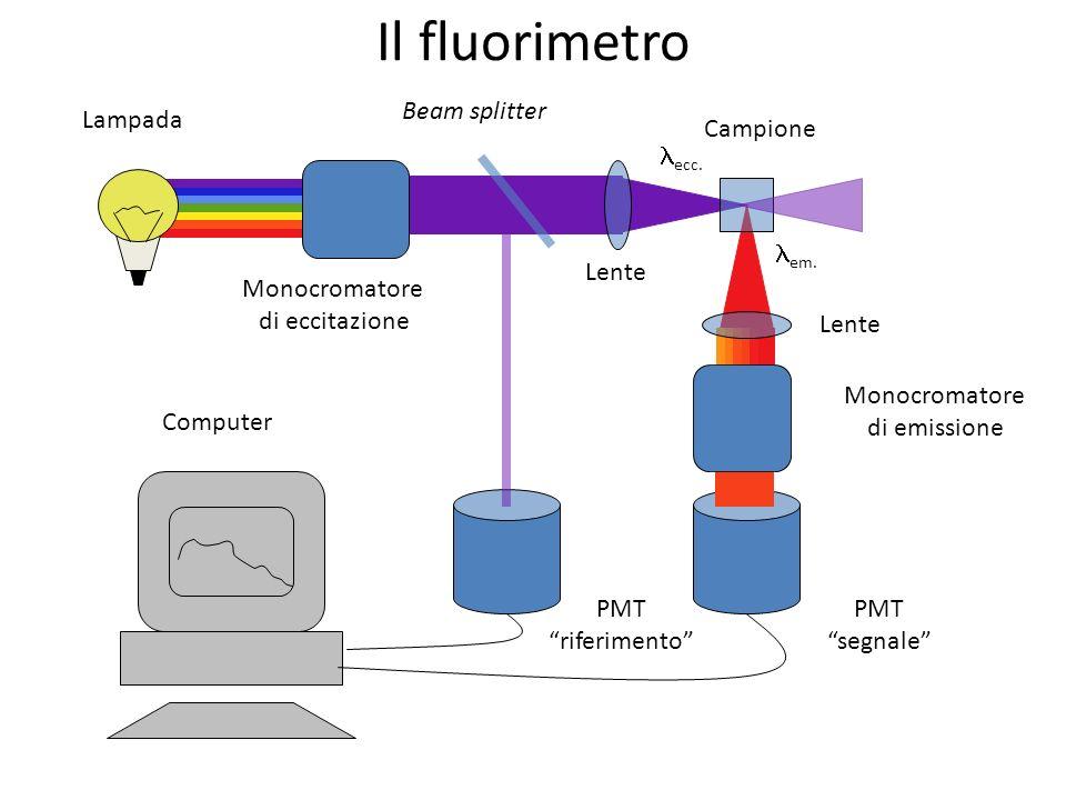 Il fluorimetro Beam splitter Lampada Campione lecc. lem. Lente