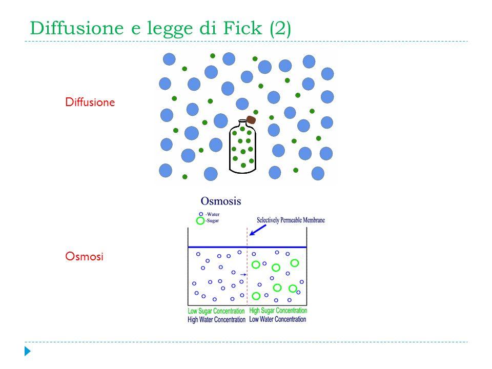 Diffusione e legge di Fick (2)