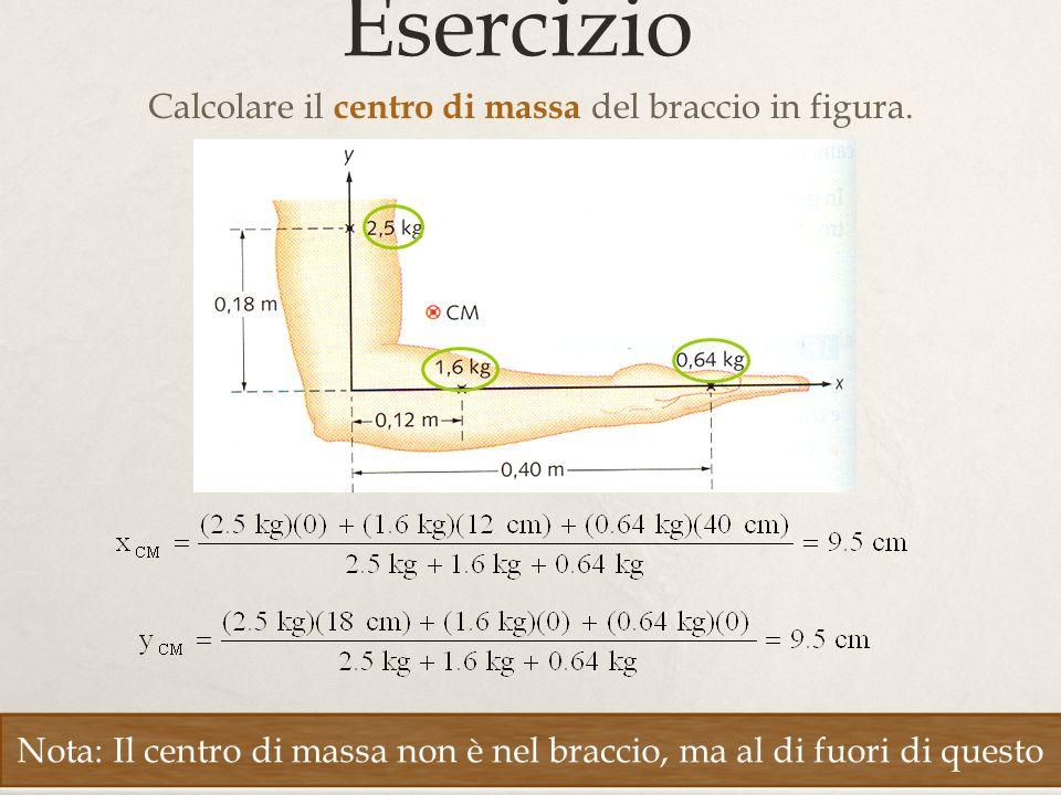 Calcolare il centro di massa del braccio in figura.