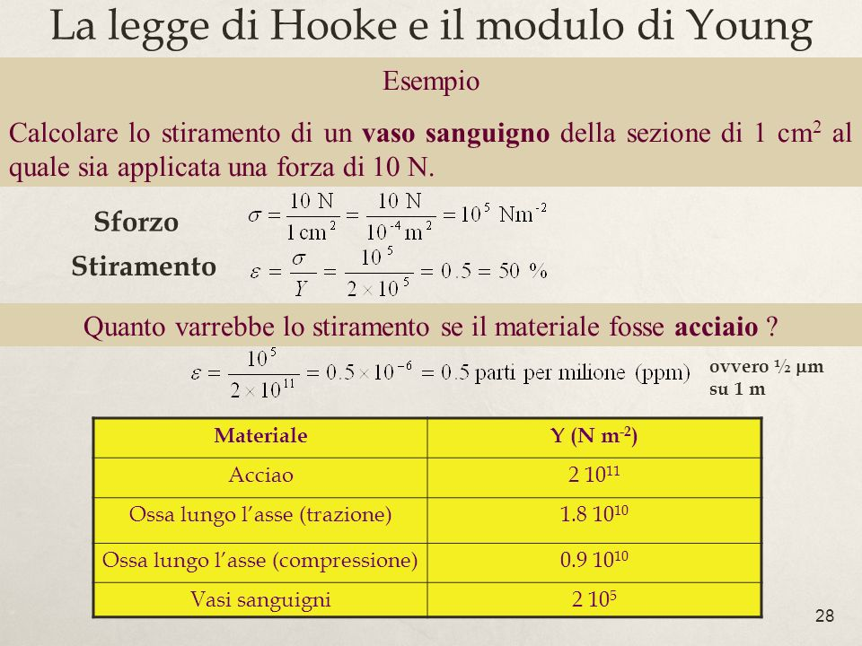 La legge di Hooke e il modulo di Young