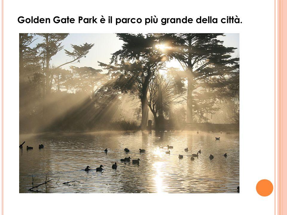 Golden Gate Park è il parco più grande della città.