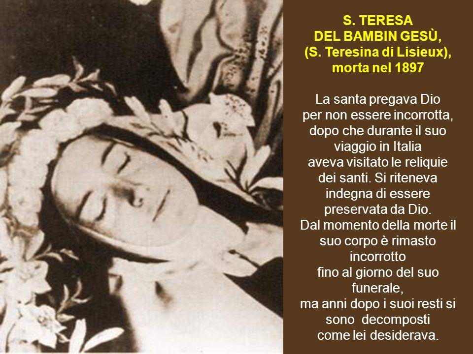 (S. Teresina di Lisieux),