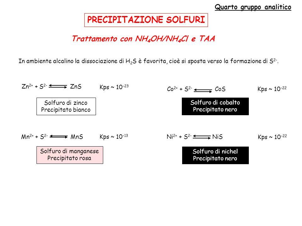 Quarto gruppo analitico Trattamento con NH4OH/NH4Cl e TAA