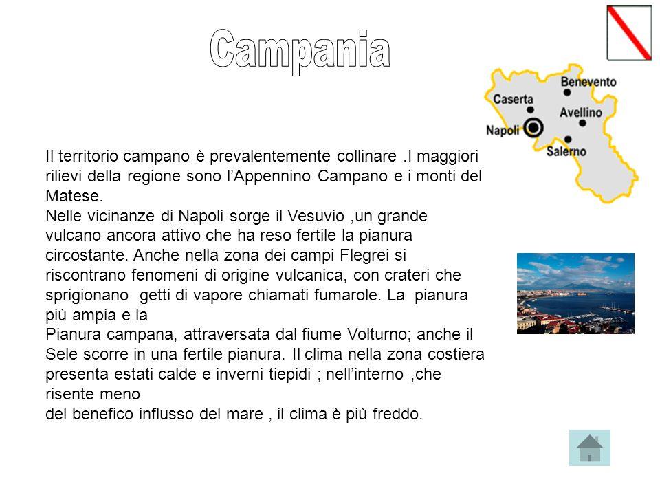 Campania Il territorio campano è prevalentemente collinare .I maggiori rilievi della regione sono l'Appennino Campano e i monti del Matese.