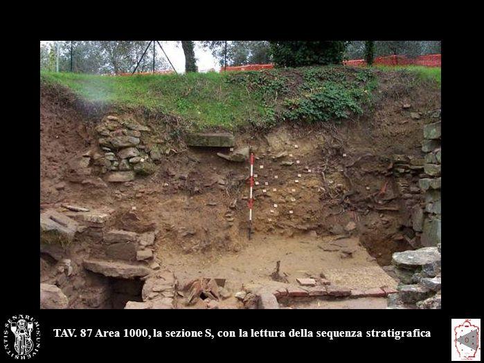 TAV. 87 Area 1000, la sezione S, con la lettura della sequenza stratigrafica