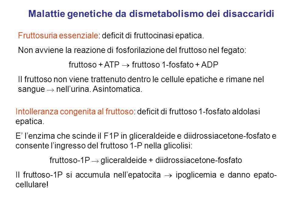 Malattie genetiche da dismetabolismo dei disaccaridi