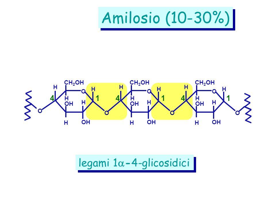 Amilosio (10-30%) legami 1-4-glicosidici 4 1 4 1 4 1 CH2OH CH2OH