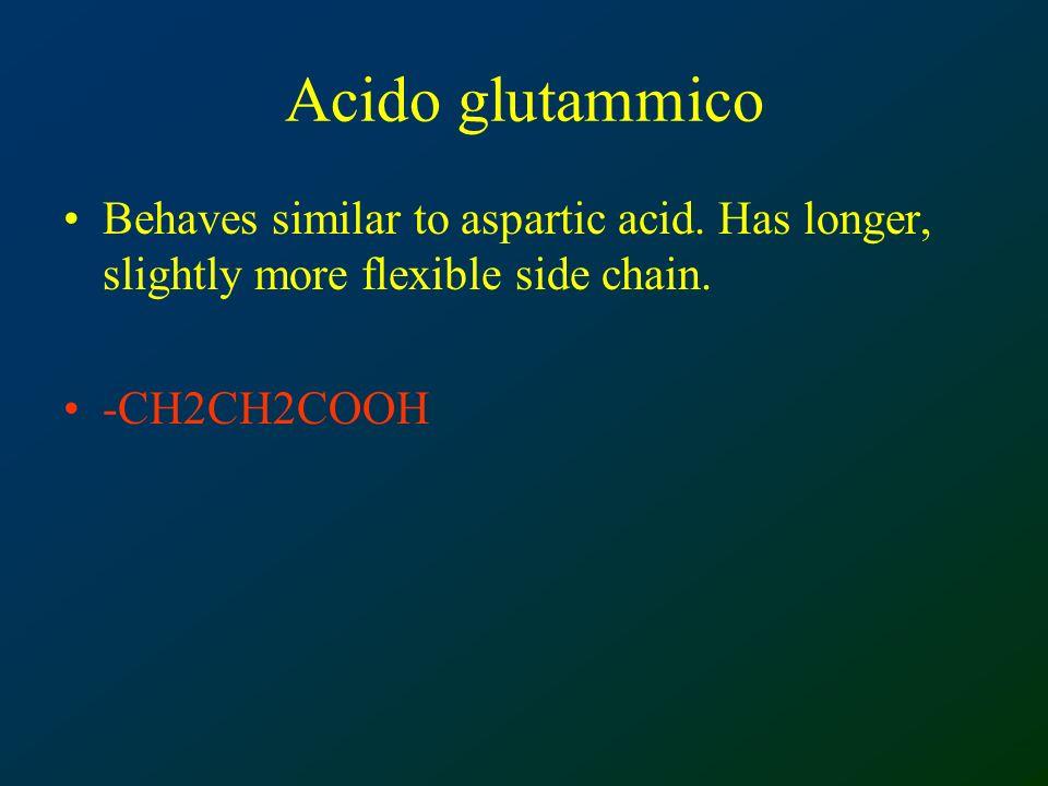 Acido glutammico Behaves similar to aspartic acid.