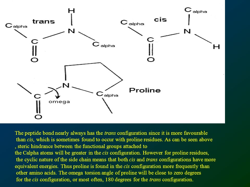 The peptide bond nearly always has the trans configuration since it is more favourable