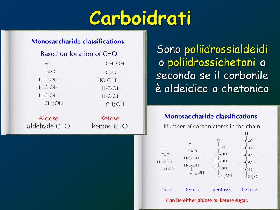 Carboidrati Sono poliidrossialdeidi o poliidrossichetoni a seconda se il corbonile è aldeidico o chetonico.