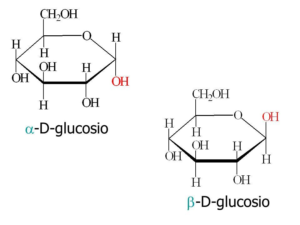a-D-glucosio b-D-glucosio