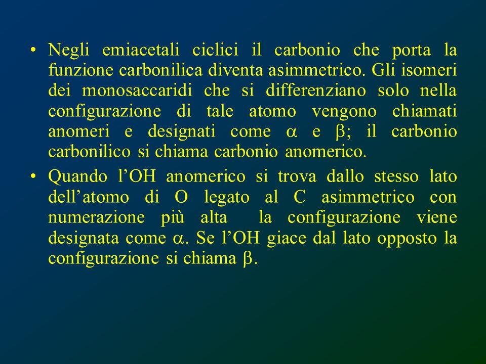 Negli emiacetali ciclici il carbonio che porta la funzione carbonilica diventa asimmetrico. Gli isomeri dei monosaccaridi che si differenziano solo nella configurazione di tale atomo vengono chiamati anomeri e designati come a e b; il carbonio carbonilico si chiama carbonio anomerico.
