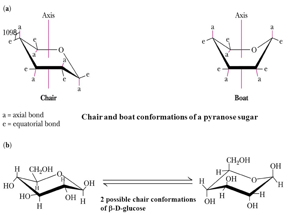 Chair and boat conformations of a pyranose sugar