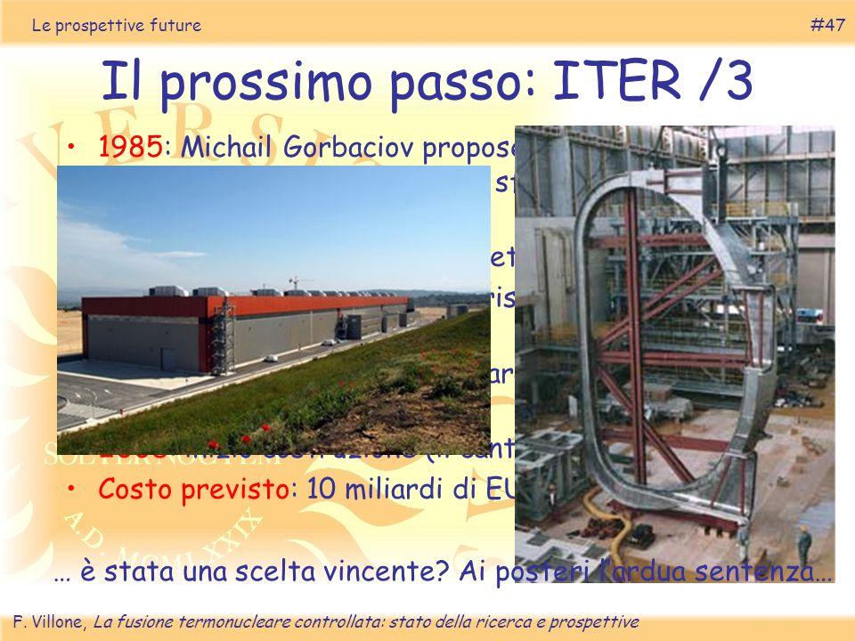 Il prossimo passo: ITER /3