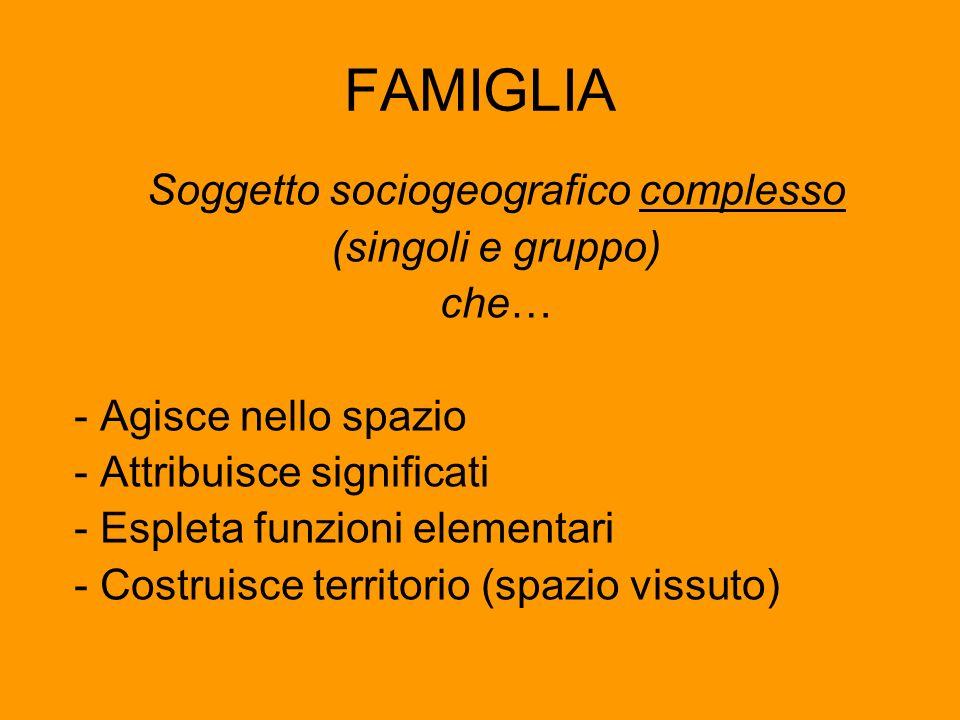 Soggetto sociogeografico complesso