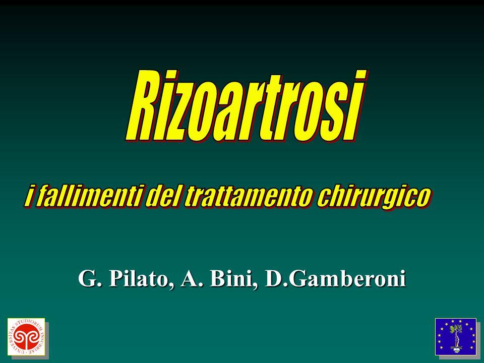G. Pilato, A. Bini, D.Gamberoni