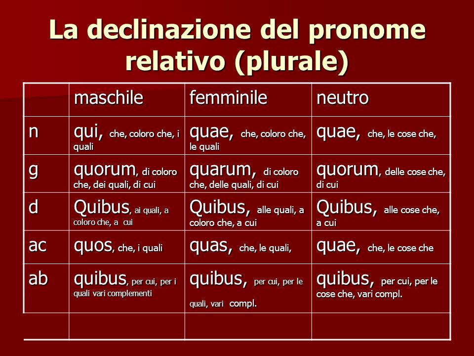 La declinazione del pronome relativo (plurale)