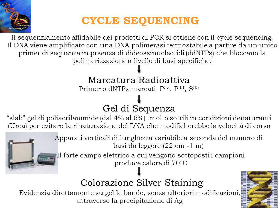 CYCLE SEQUENCING Marcatura Radioattiva Gel di Sequenza