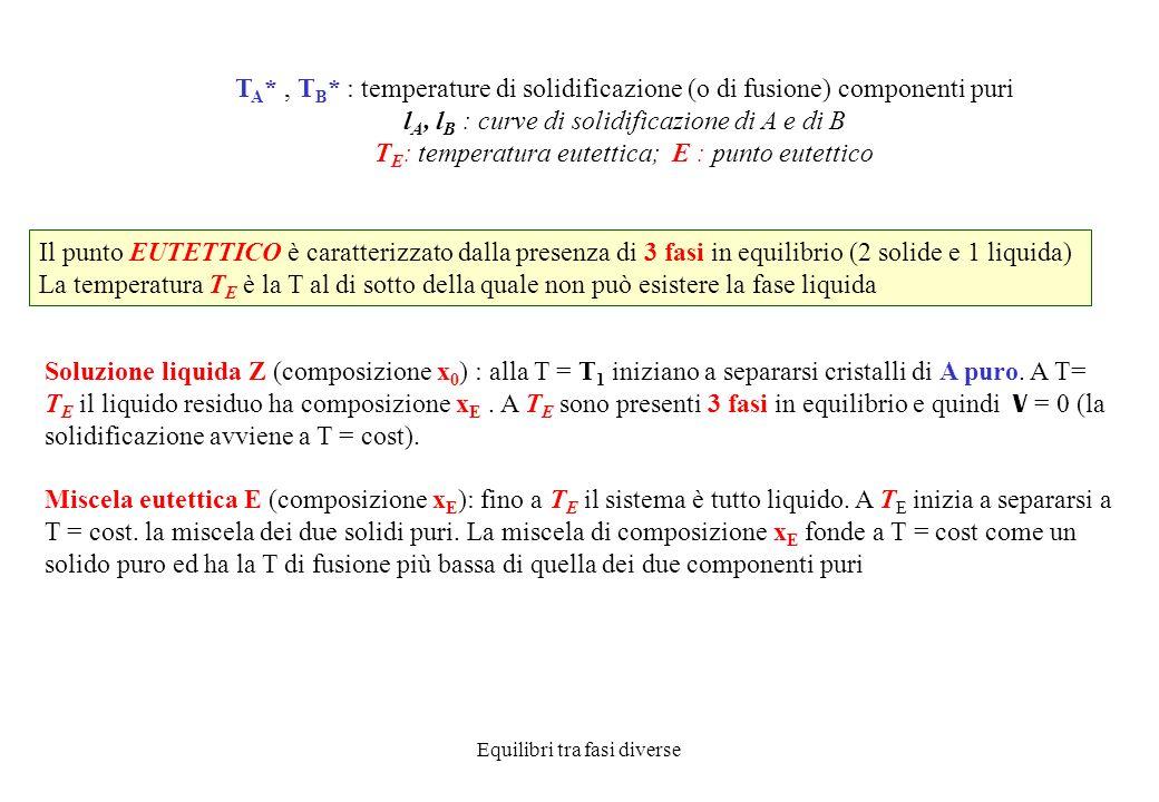lA, lB : curve di solidificazione di A e di B