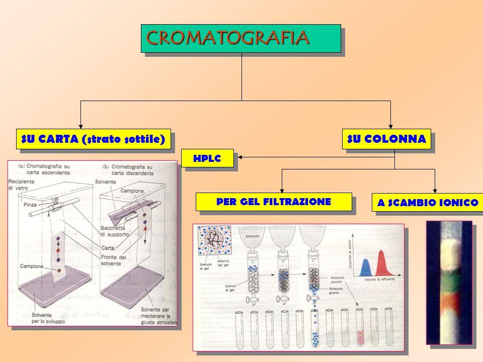 CROMATOGRAFIA SU CARTA (strato sottile) SU COLONNA HPLC
