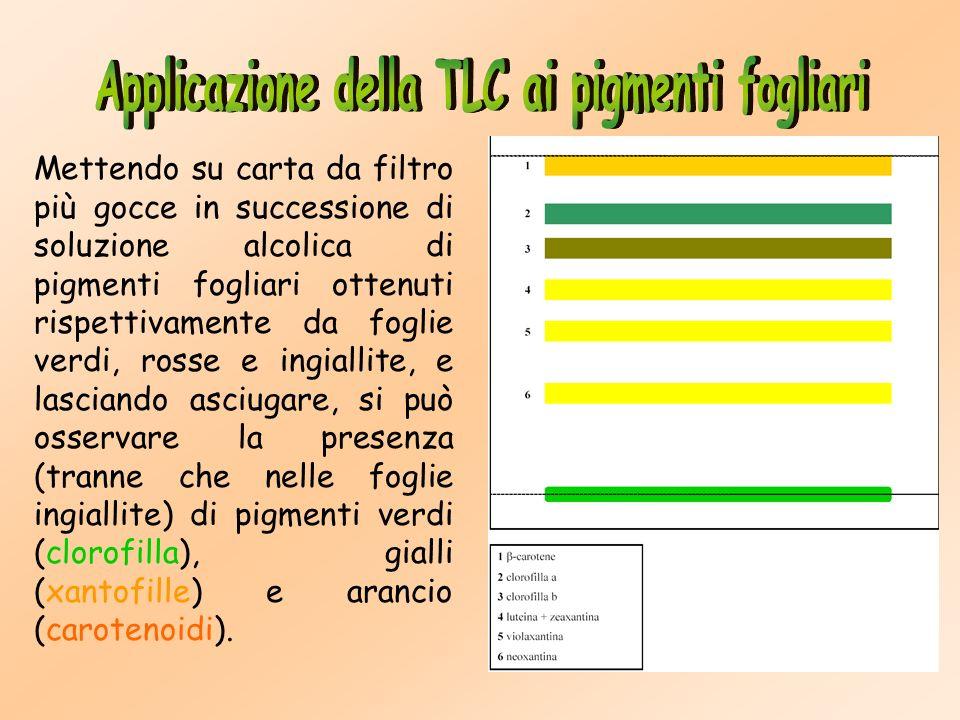 Applicazione della TLC ai pigmenti fogliari