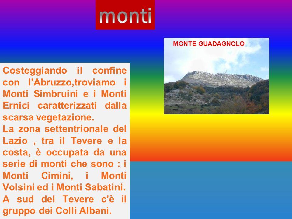 monti MONTE GUADAGNOLO. Costeggiando il confine con l Abruzzo,troviamo i Monti Simbruini e i Monti Ernici caratterizzati dalla scarsa vegetazione.