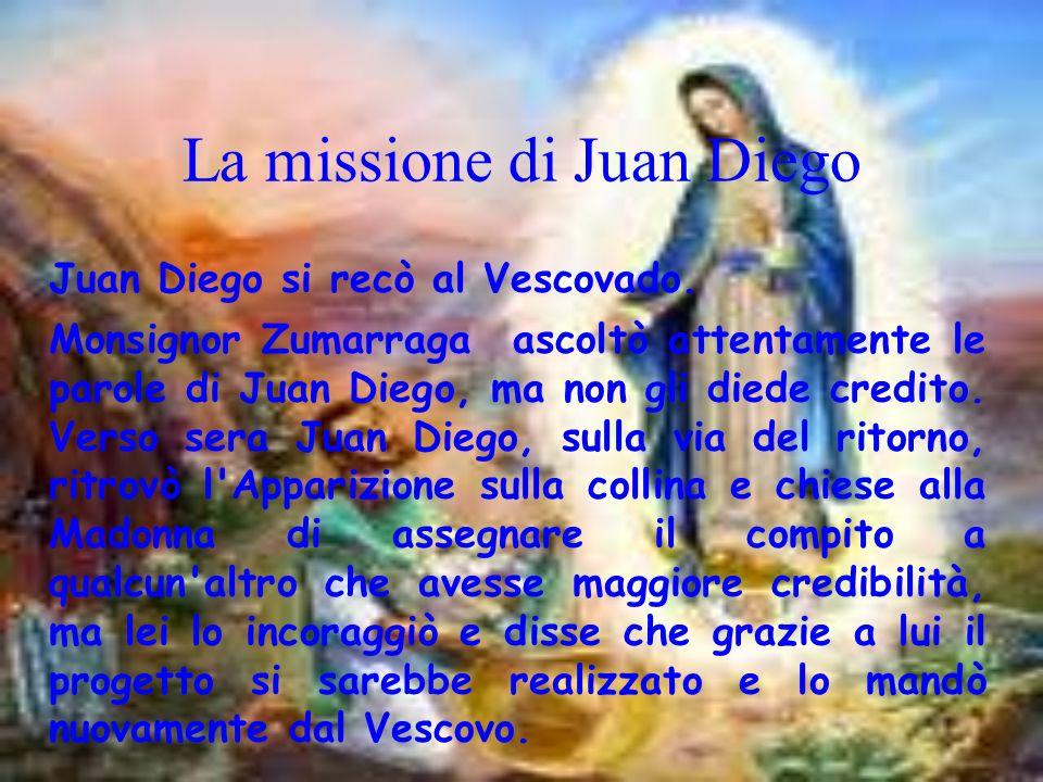 La missione di Juan Diego