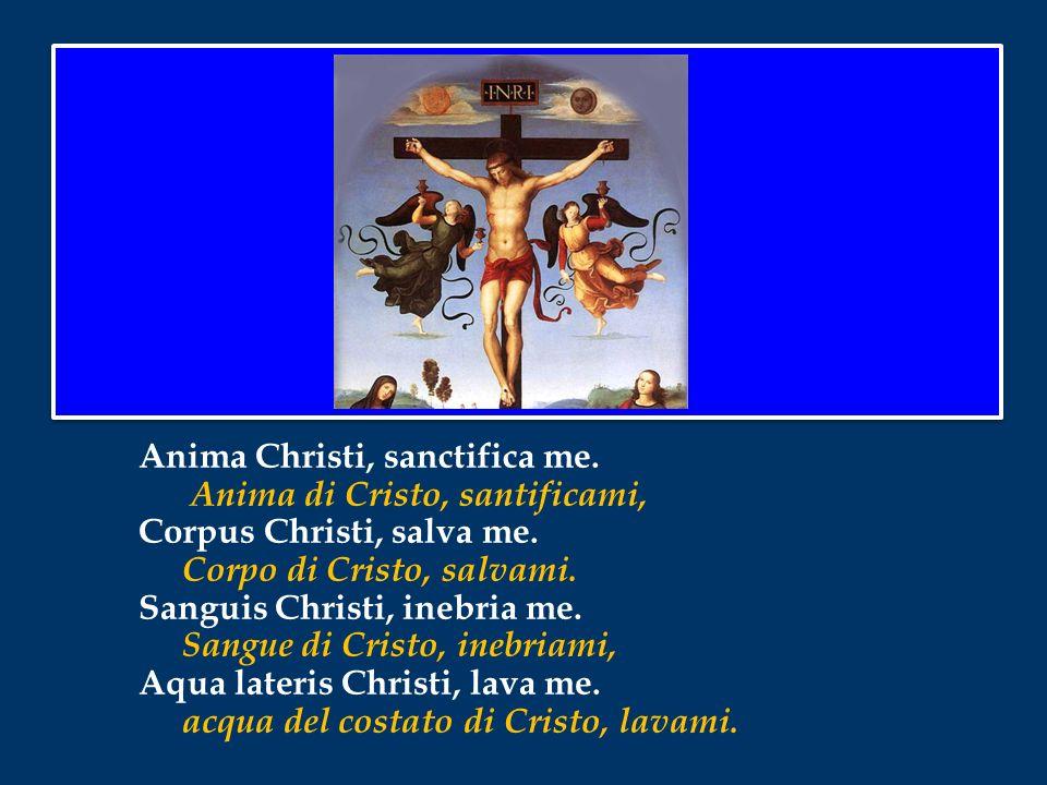 Anima Christi, sanctifica me