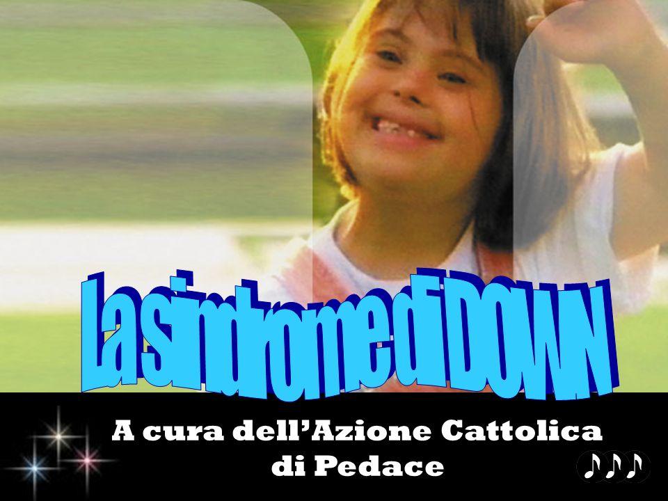 A cura dell'Azione Cattolica di Pedace