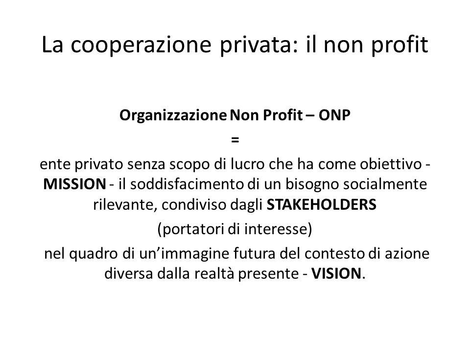 La cooperazione privata: il non profit