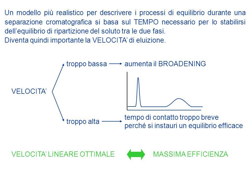 Un modello più realistico per descrivere i processi di equilibrio durante una separazione cromatografica si basa sul TEMPO necessario per lo stabilirsi dell'equilibrio di ripartizione del soluto tra le due fasi.