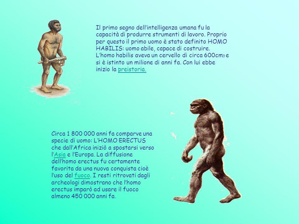 Il primo segno dell'intelligenza umana fu la capacità di produrre strumenti di lavoro. Proprio per questo il primo uomo è stato definito HOMO HABILIS: uomo abile, capace di costruire. L'homo habilis aveva un cervello di circa 600cm3 e si è istinto un milione di anni fa. Con lui ebbe inizio la preistoria.