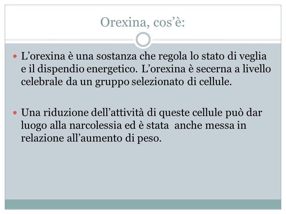 Orexina, cos'è: