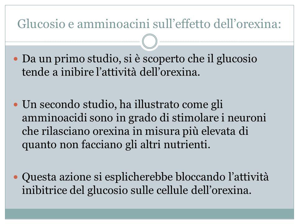 Glucosio e amminoacini sull'effetto dell'orexina: